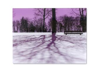 foto afdrukken 30x40 cm
